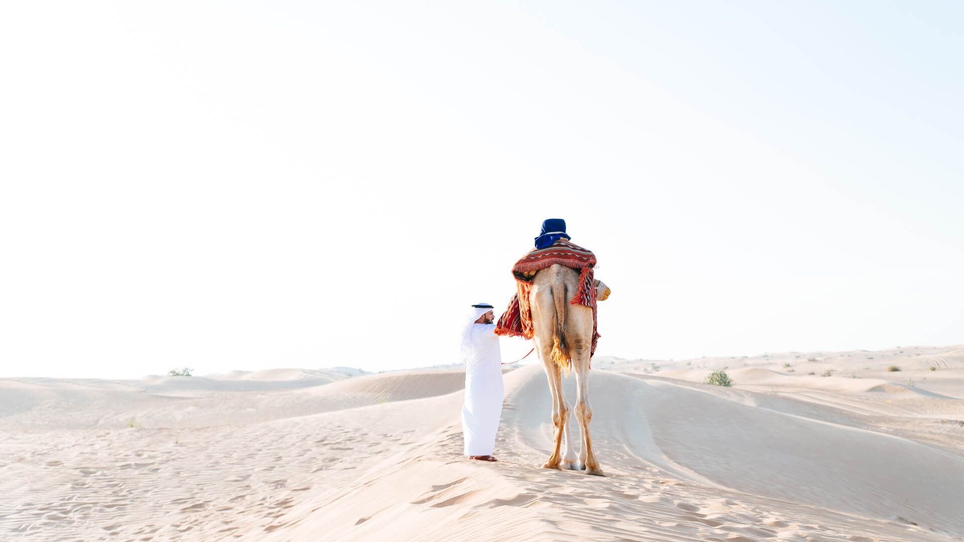Arabian man with traditional clothes riding his camel